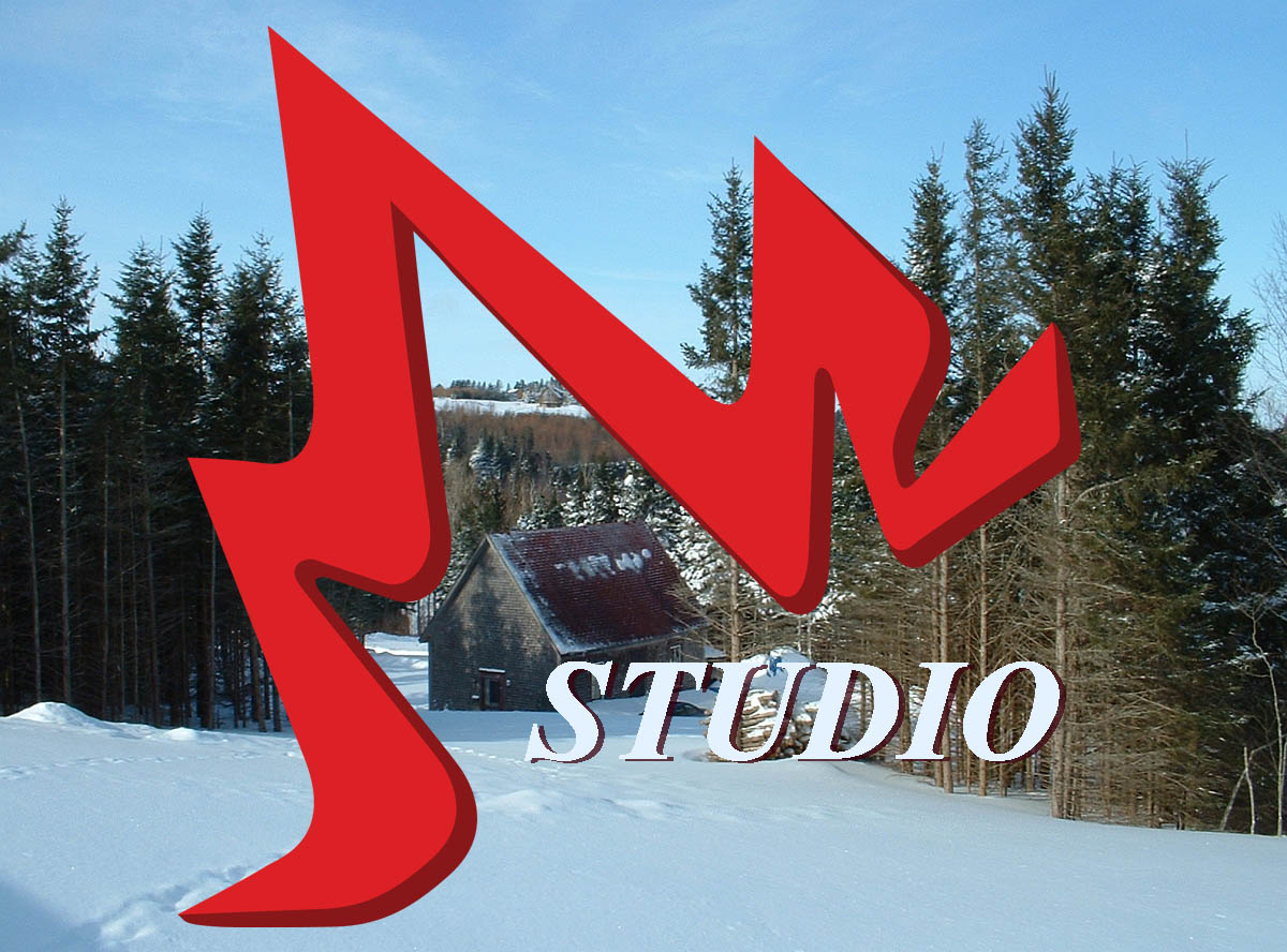 studio_winter-logo